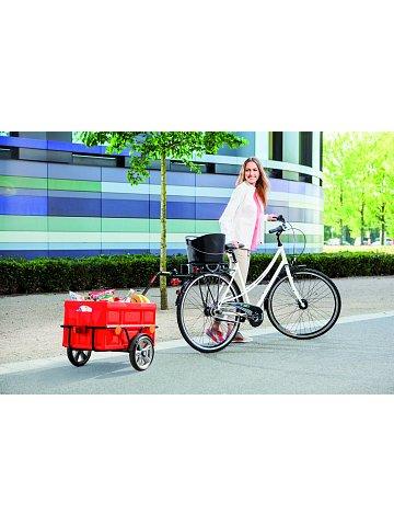 Přívěsný vozík za jízdní kolo a pro volný čas Andersen EASY