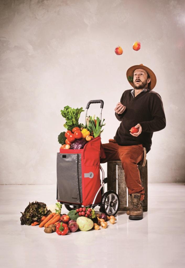 ROYAL SHOPPER® - velká nákupní taška s kolečky standard